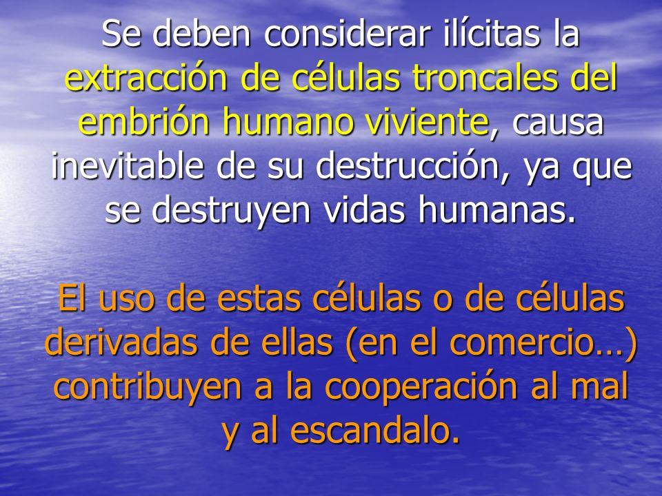 Se deben considerar ilícitas la extracción de células troncales del embrión humano viviente, causa inevitable de su destrucción, ya que se destruyen v