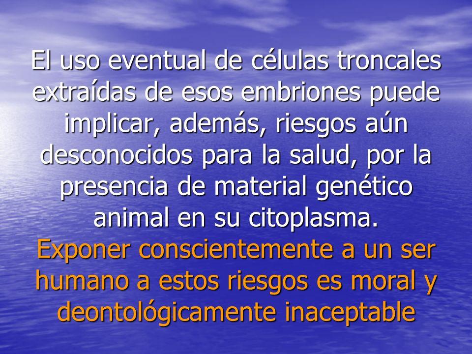 El uso eventual de células troncales extraídas de esos embriones puede implicar, además, riesgos aún desconocidos para la salud, por la presencia de m