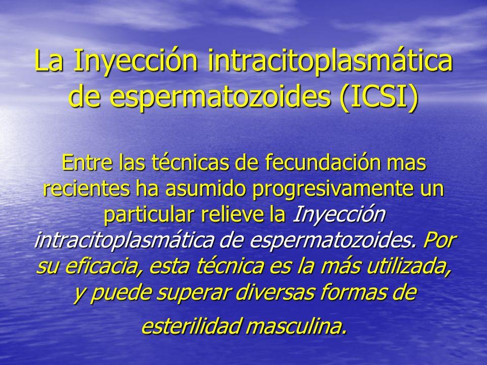 La Inyección intracitoplasmática de espermatozoides (ICSI) Entre las técnicas de fecundación mas recientes ha asumido progresivamente un particular re