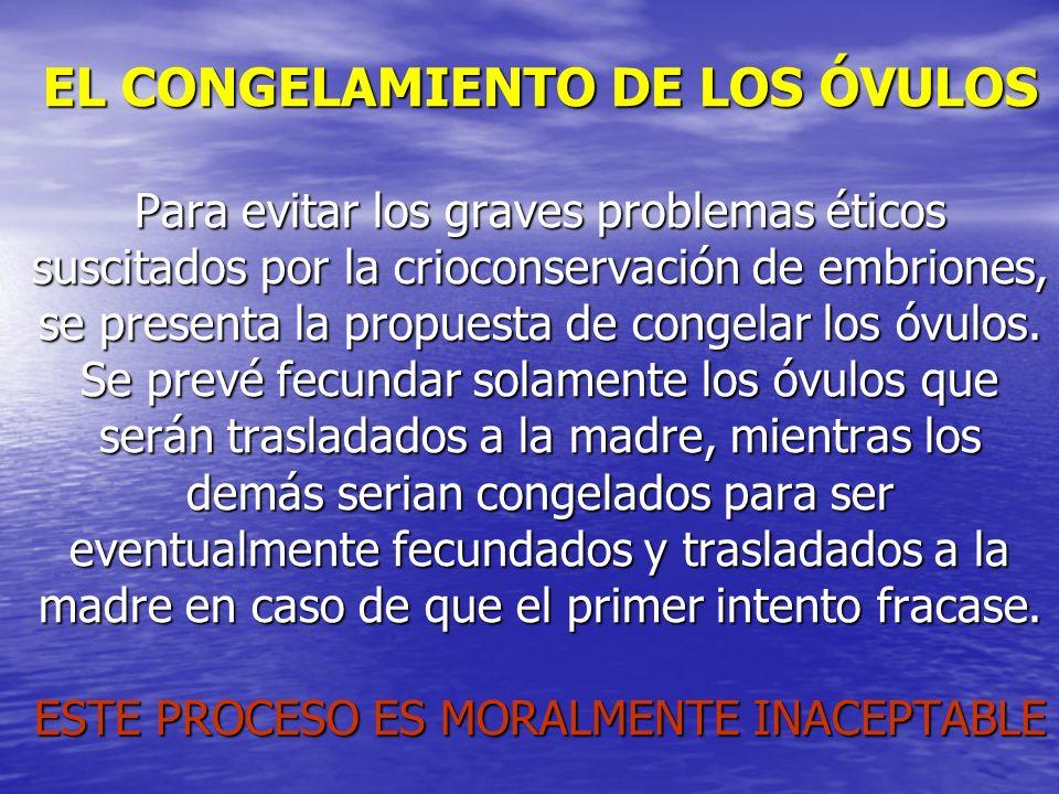 EL CONGELAMIENTO DE LOS ÓVULOS Para evitar los graves problemas éticos suscitados por la crioconservación de embriones, se presenta la propuesta de co