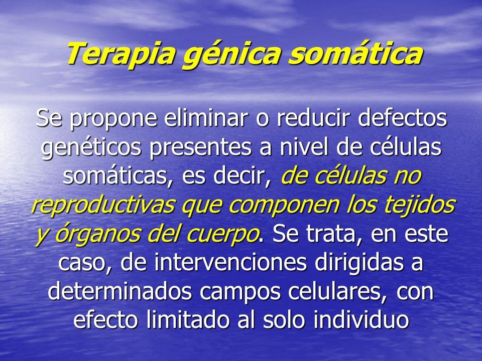 Terapia génica somática Se propone eliminar o reducir defectos genéticos presentes a nivel de células somáticas, es decir, de células no reproductivas