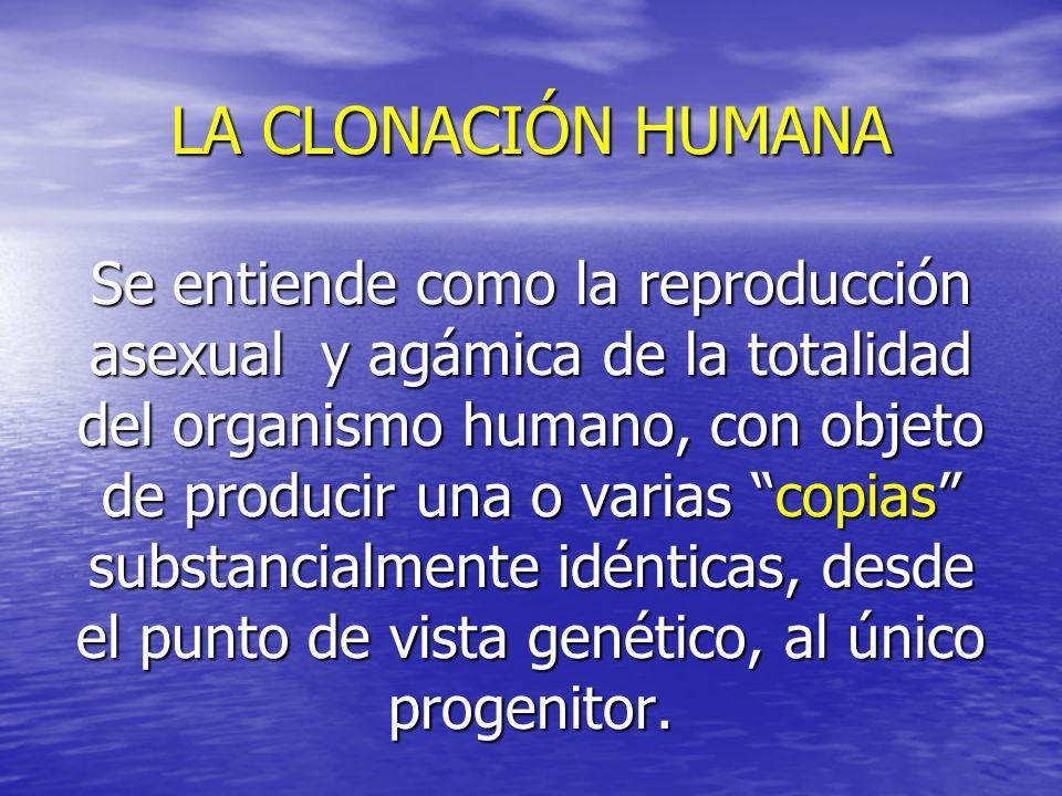 LA CLONACIÓN HUMANA Se entiende como la reproducción asexual y agámica de la totalidad del organismo humano, con objeto de producir una o varias copia