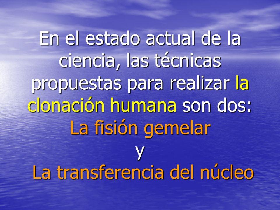 En el estado actual de la ciencia, las técnicas propuestas para realizar la clonación humana son dos: La fisión gemelar y La transferencia del núcleo