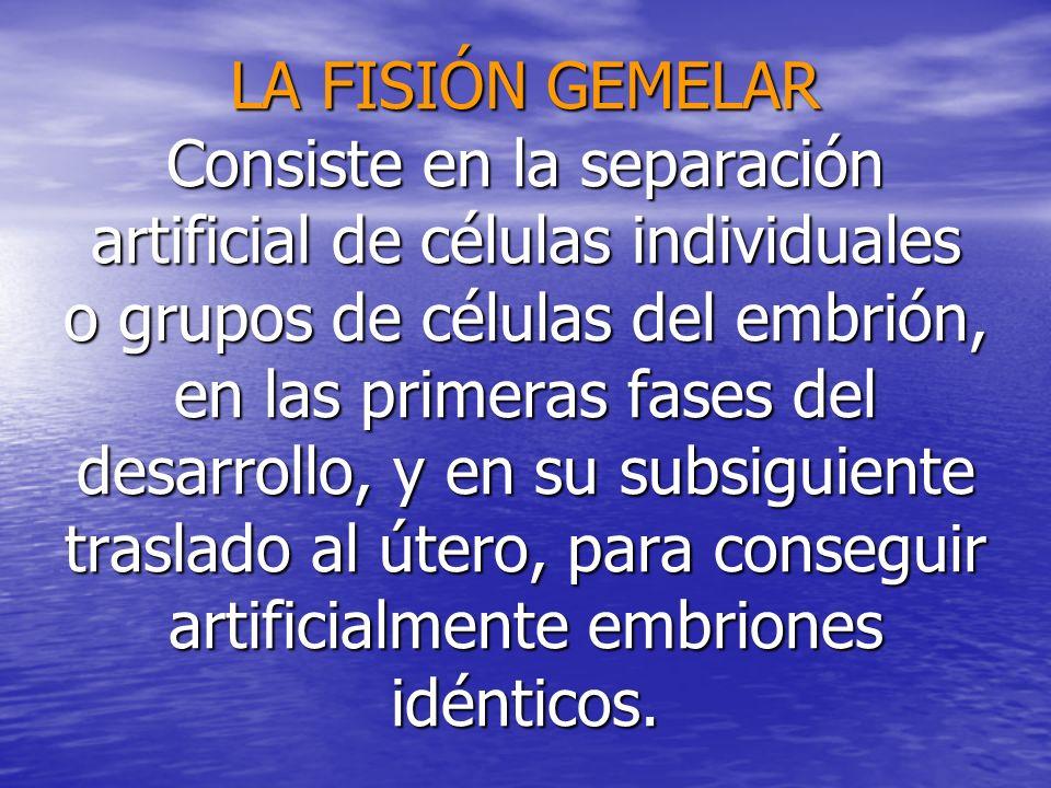 LA FISIÓN GEMELAR Consiste en la separación artificial de células individuales o grupos de células del embrión, en las primeras fases del desarrollo,