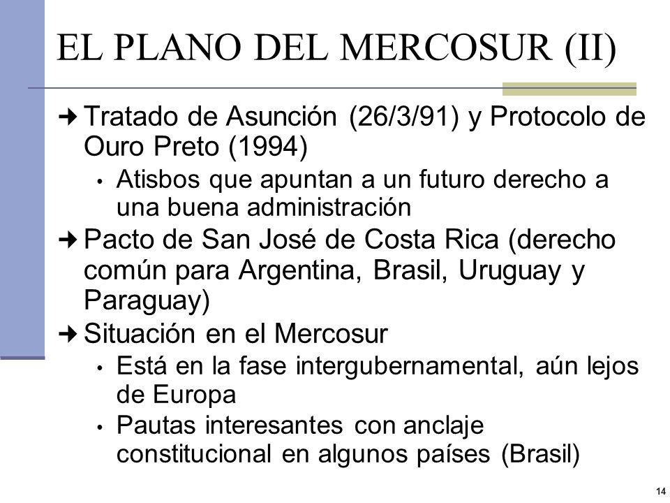 13 EL PLANO DEL MERCOSUR (I) Texto constitucional argentino deficitario Calidad y eficiencia de los servicios públicos (Art. 42) Incorporación de: - D