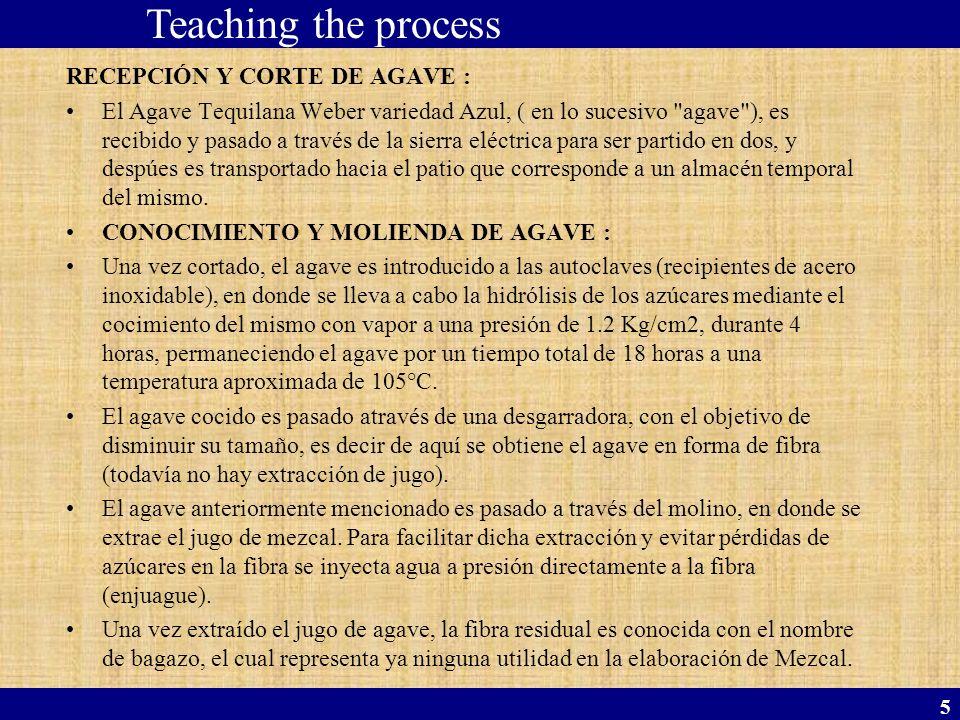 5 RECEPCIÓN Y CORTE DE AGAVE : El Agave Tequilana Weber variedad Azul, ( en lo sucesivo