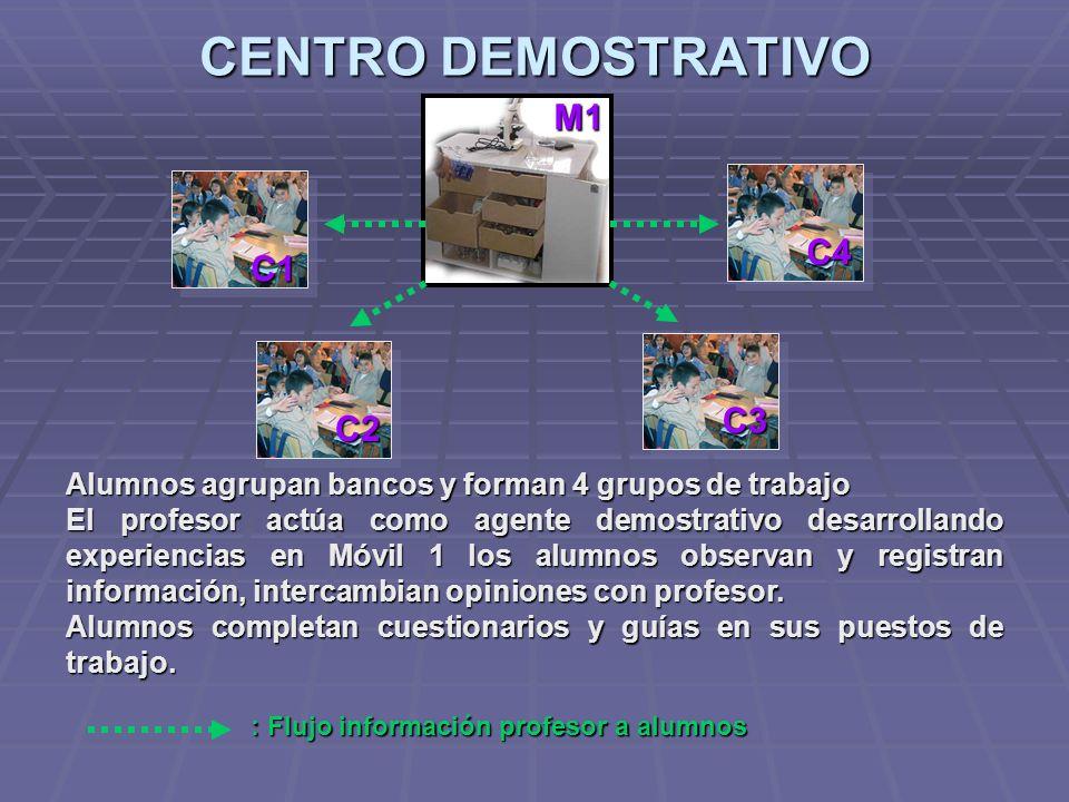 CENTRO DEMOSTRATIVO C1 C2 C3 C4 Alumnos agrupan bancos y forman 4 grupos de trabajo El profesor actúa como agente demostrativo desarrollando experienc