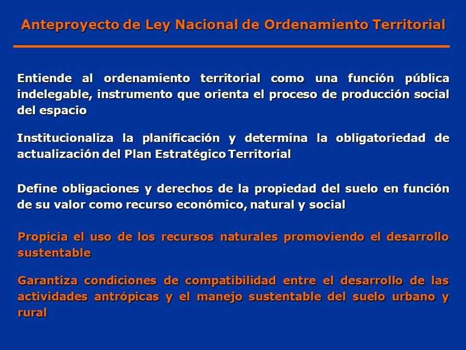 Entiende al ordenamiento territorial como una función pública indelegable, instrumento que orienta el proceso de producción social del espacio Institu