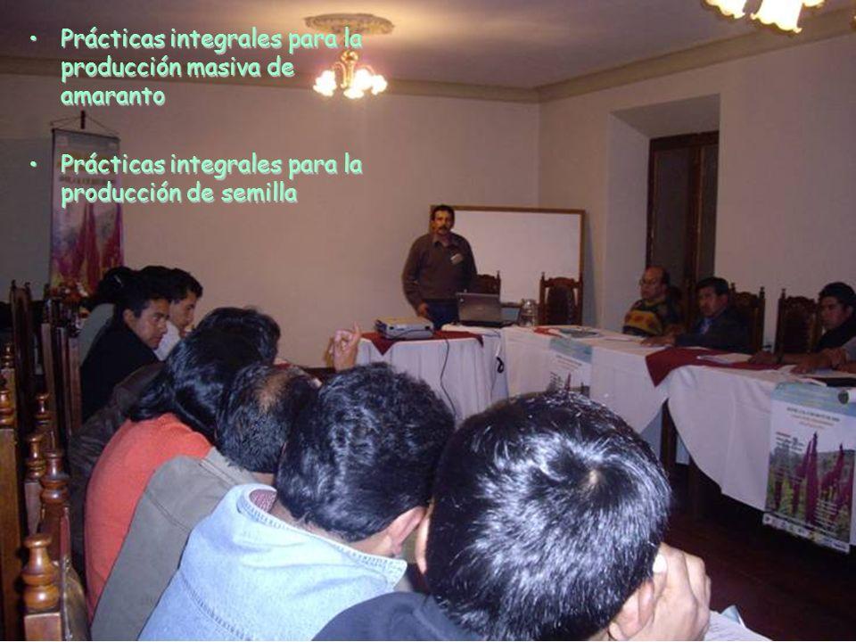 Prácticas integrales para la producción masiva de amarantoPrácticas integrales para la producción masiva de amaranto Prácticas integrales para la prod