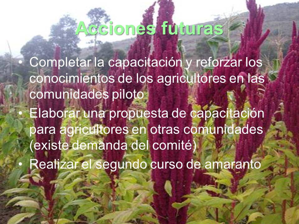Acciones futuras Completar la capacitación y reforzar los conocimientos de los agricultores en las comunidades piloto Elaborar una propuesta de capaci