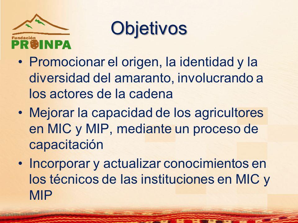 Objetivos Promocionar el origen, la identidad y la diversidad del amaranto, involucrando a los actores de la cadena Mejorar la capacidad de los agricu
