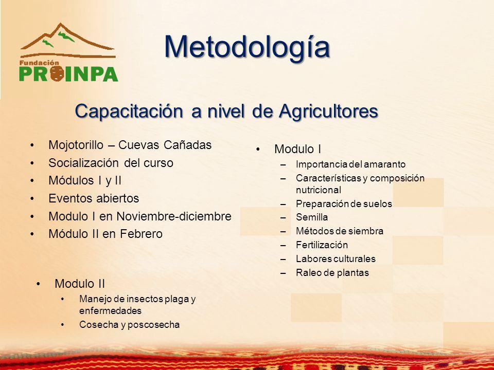 Metodología Modulo I –Importancia del amaranto –Características y composición nutricional –Preparación de suelos –Semilla –Métodos de siembra –Fertili