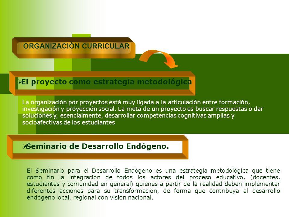 ORGANIZACIÓN CURRICULAR El proyecto como estrategia metodológica La organización por proyectos está muy ligada a la articulación entre formación, inve