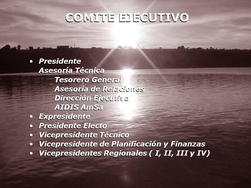 COMITE EJECUTIVO Presidente Asesoría Técnica Tesorero General Asesoría de Relaciones Dirección Ejecutiva AIDIS AmSa Expresidente Presidente Electo Vic