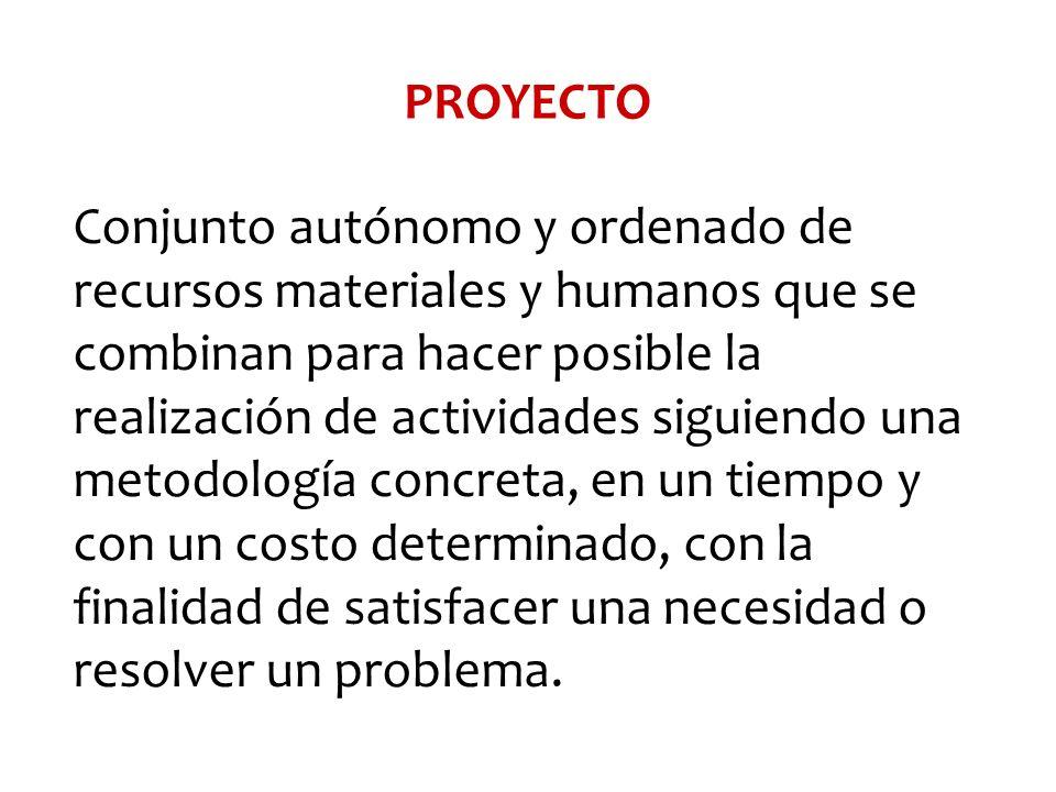 Conjunto autónomo y ordenado de recursos materiales y humanos que se combinan para hacer posible la realización de actividades siguiendo una metodolog