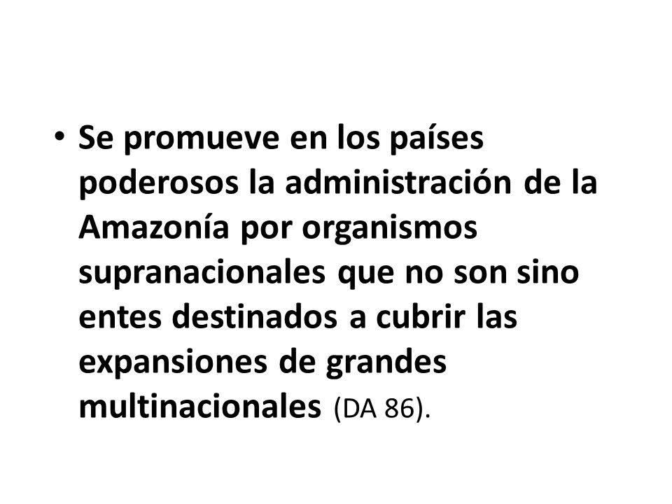 Se promueve en los países poderosos la administración de la Amazonía por organismos supranacionales que no son sino entes destinados a cubrir las expa