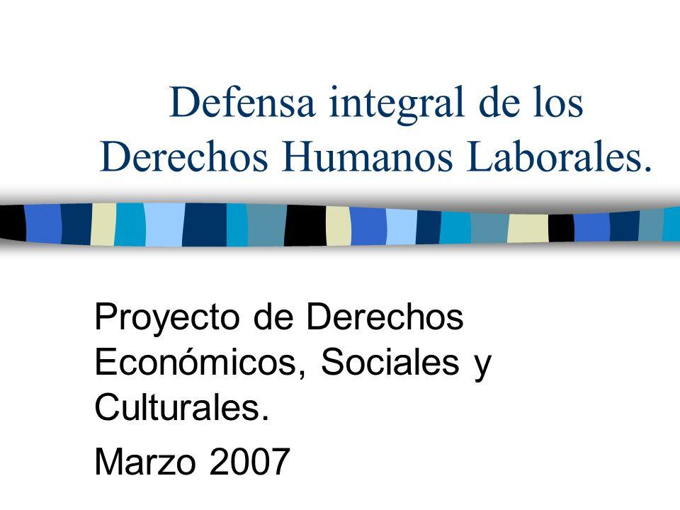 Defensa integral de los Derechos Humanos Laborales. Proyecto de Derechos Económicos, Sociales y Culturales. Marzo 2007