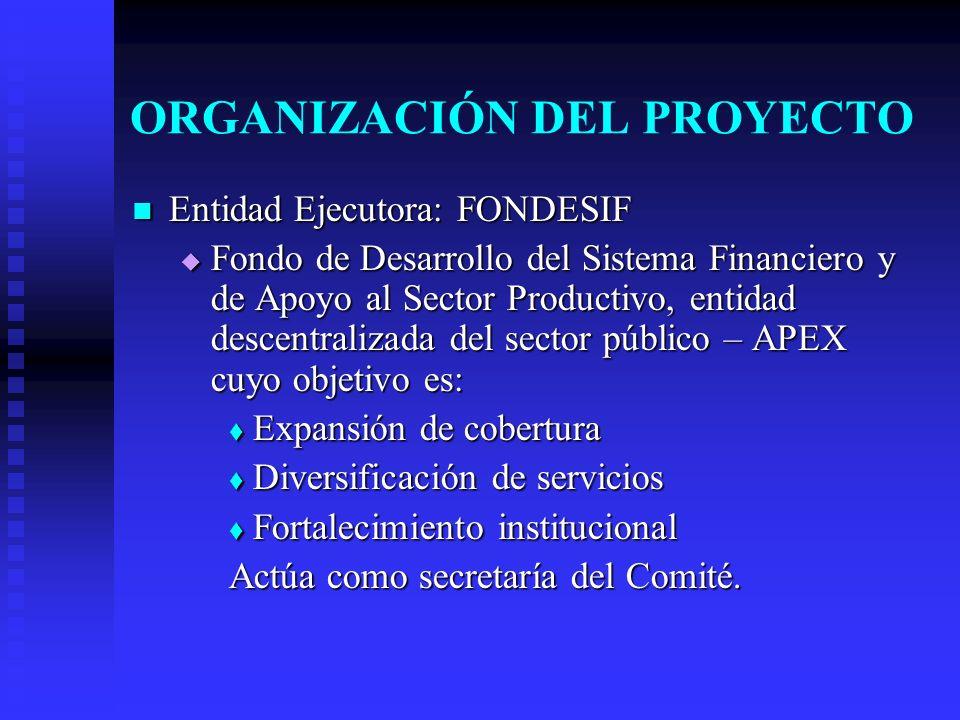 ORGANIZACIÓN DEL PROYECTO Entidad Ejecutora: FONDESIF Entidad Ejecutora: FONDESIF Fondo de Desarrollo del Sistema Financiero y de Apoyo al Sector Productivo, entidad descentralizada del sector público – APEX cuyo objetivo es: Fondo de Desarrollo del Sistema Financiero y de Apoyo al Sector Productivo, entidad descentralizada del sector público – APEX cuyo objetivo es: Expansión de cobertura Expansión de cobertura Diversificación de servicios Diversificación de servicios Fortalecimiento institucional Fortalecimiento institucional Actúa como secretaría del Comité.