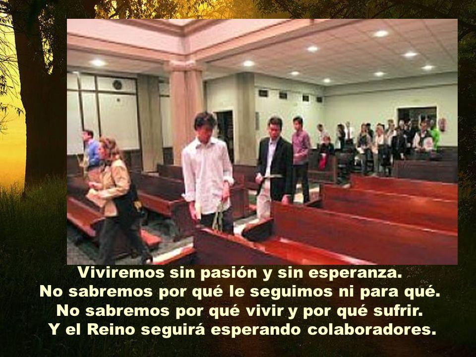 y haznos caminar en la verdad de Jesús. Sin tu luz y tu aliento, olvidaremos una y otra vez su Proyecto del reino de Dios. Ven Espíritu Santo