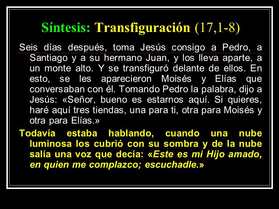 Síntesis: Transfiguración (17,1-8) Seis días después, toma Jesús consigo a Pedro, a Santiago y a su hermano Juan, y los lleva aparte, a un monte alto.