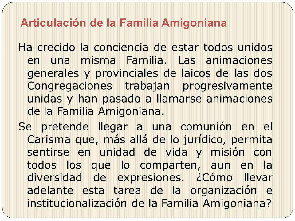 Articulación de la Familia Amigoniana Ha crecido la conciencia de estar todos unidos en una misma Familia. Las animaciones generales y provinciales de