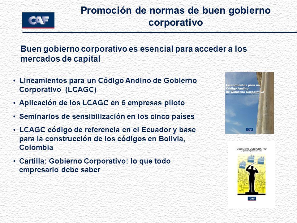 Lineamientos para un Código Andino de Gobierno Corporativo (LCAGC) Aplicación de los LCAGC en 5 empresas piloto Seminarios de sensibilización en los c