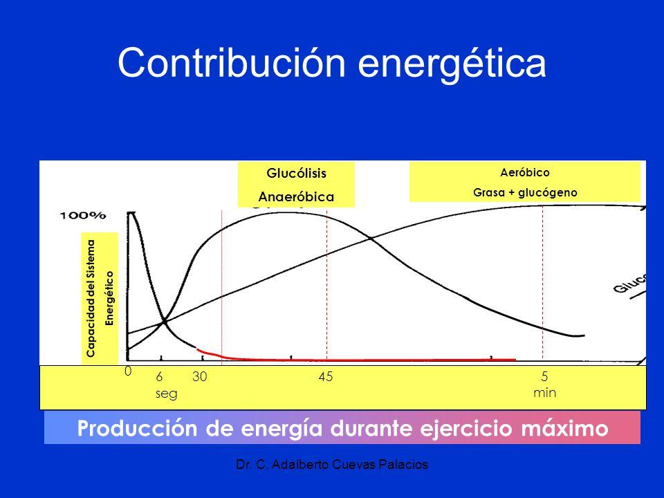 Dr. C. Adalberto Cuevas Palacios Contribución energética Producción de energía durante ejercicio máximo 30455 min seg 6 0 Glucólisis Anaeróbica Aeróbi
