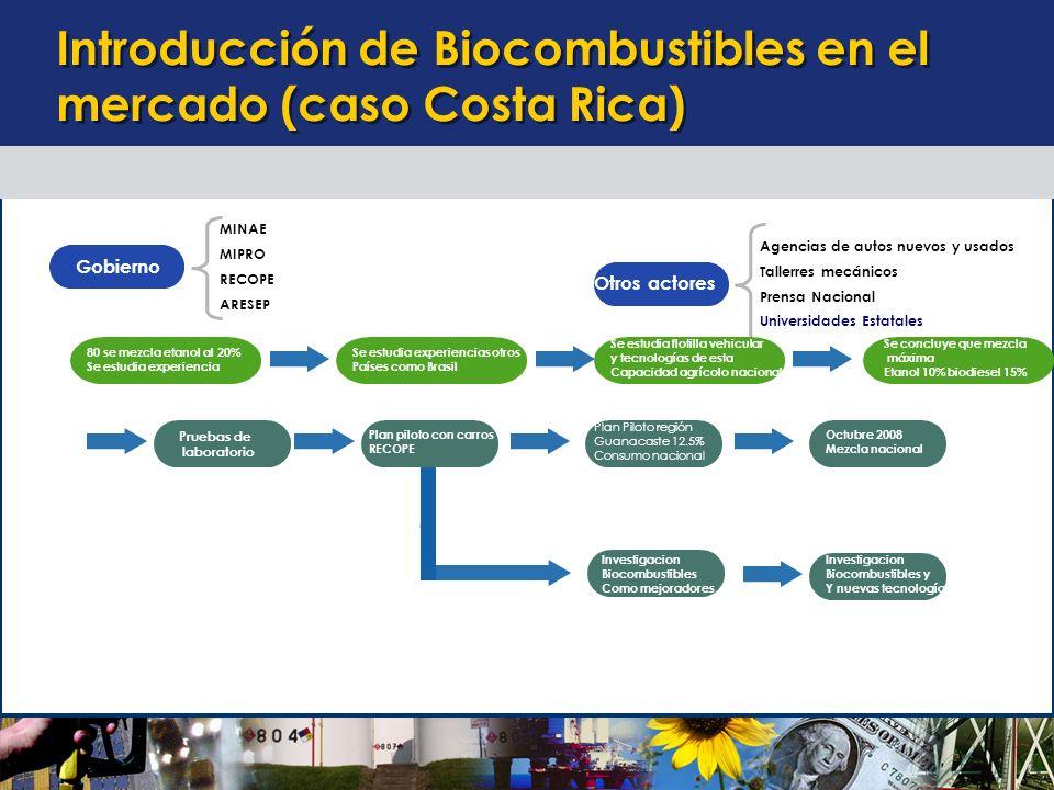 Escenario de introducción de mezclas de biocombustibles al consumo nacional.