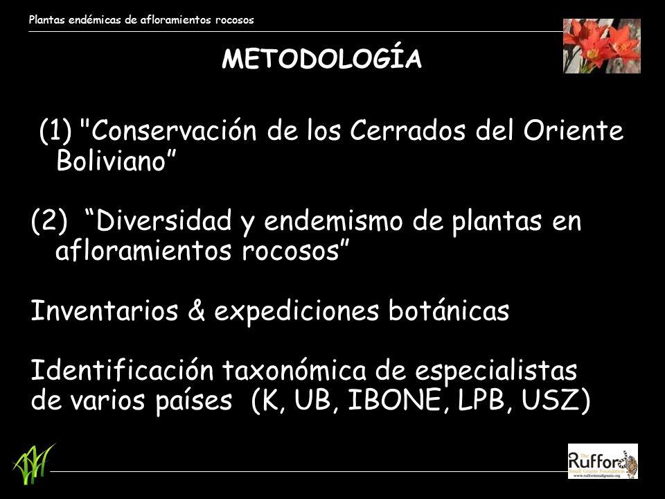 Plantas endémicas de afloramientos rocosos (1)