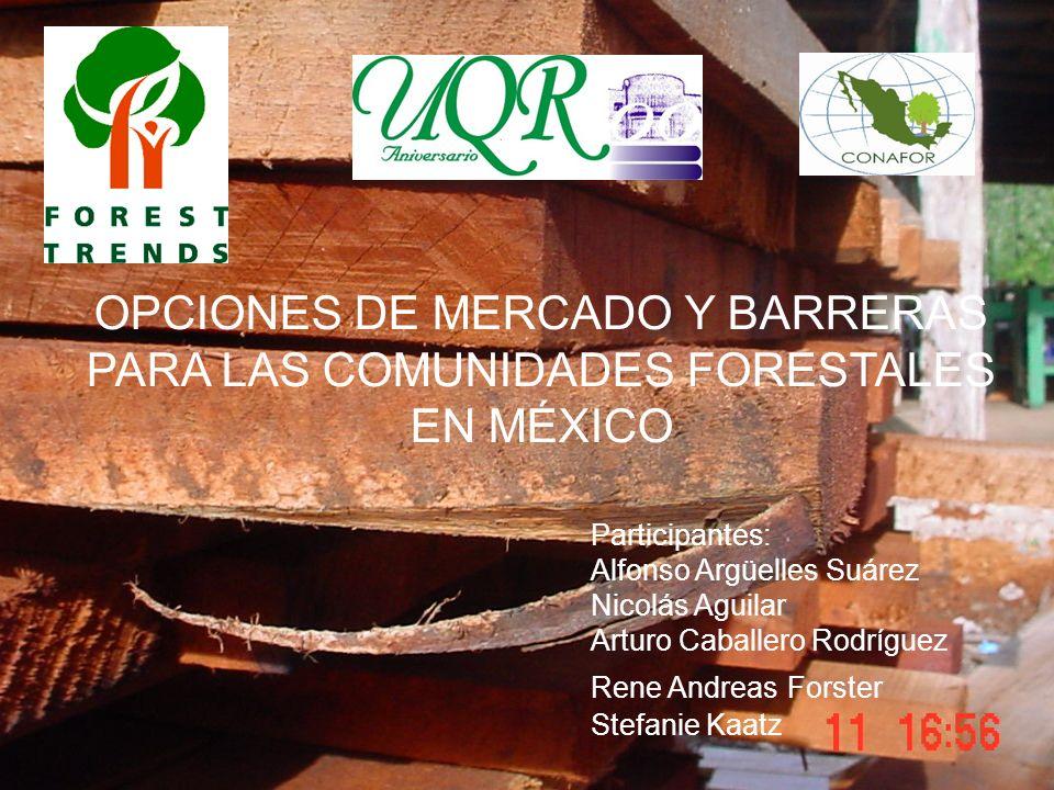 OPCIONES DE MERCADO Y BARRERAS PARA LAS COMUNIDADES FORESTALES EN MÉXICO Participantes: Alfonso Argüelles Suárez Nicolás Aguilar Arturo Caballero Rodr