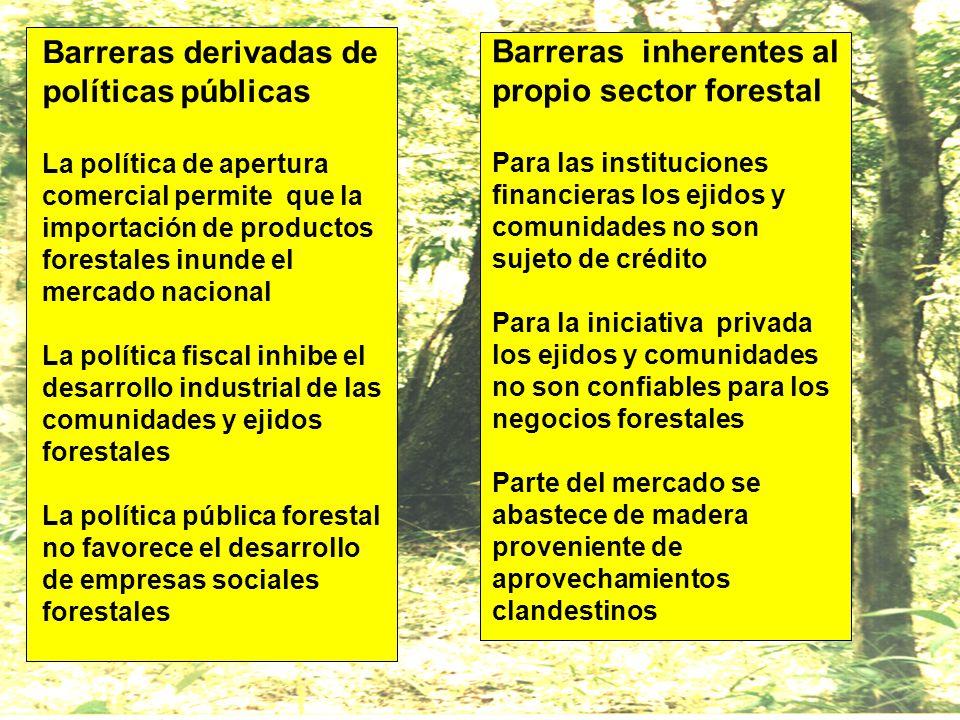 Barreras derivadas de políticas públicas La política de apertura comercial permite que la importación de productos forestales inunde el mercado nacion
