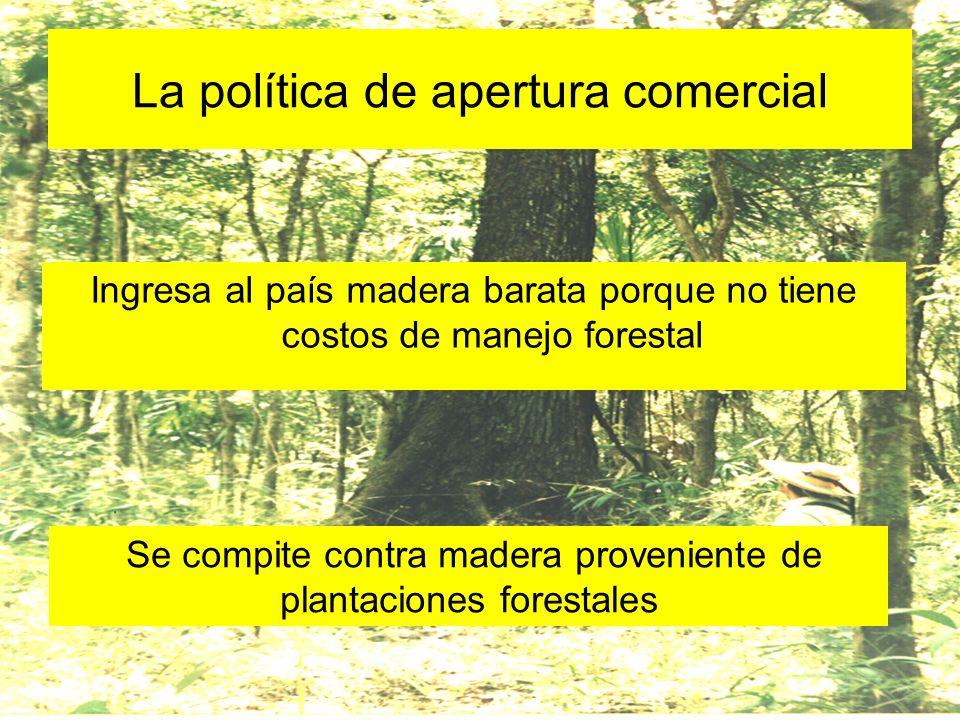 La política de apertura comercial Ingresa al país madera barata porque no tiene costos de manejo forestal Se compite contra madera proveniente de plan