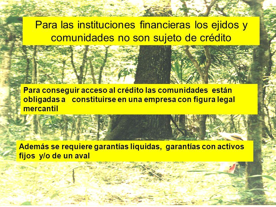 Para las instituciones financieras los ejidos y comunidades no son sujeto de crédito Para conseguir acceso al crédito las comunidades están obligadas