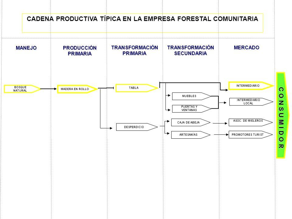 BOSQUE NATURAL C O N S U M I D O R INTERMEDIARIO MUEBLES PUERTAS Y VENTANAS TABLA MANEJO PRODUCCIÓN PRIMARIA TRANSFORMACIÓN PRIMARIA TRANSFORMACIÓN SE