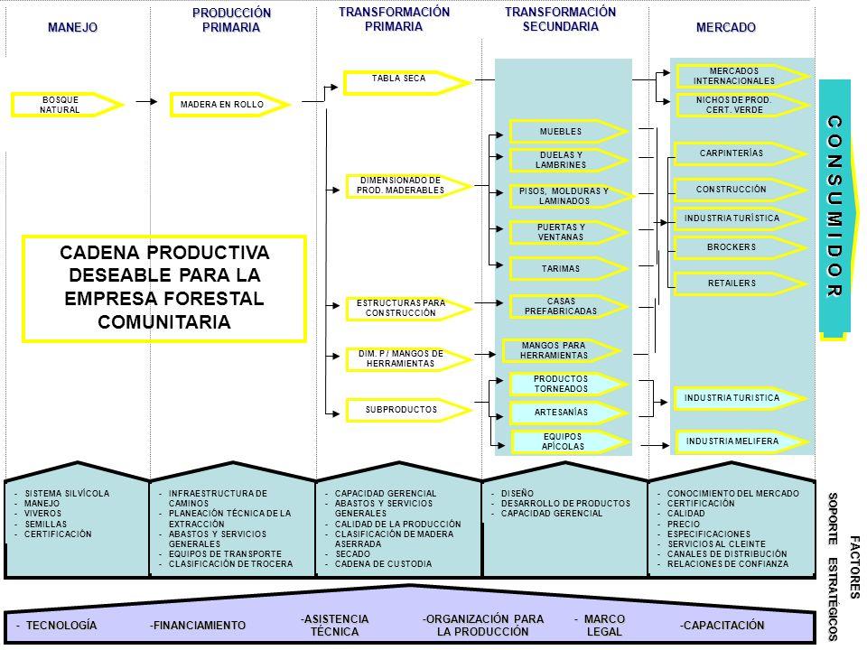 C O N S U M I D O R -SISTEMA SILVÍCOLA -MANEJO -VIVEROS -SEMILLAS -CERTIFICACIÓN -INFRAESTRUCTURA DE CAMINOS -PLANEACIÓN TÉCNICA DE LA EXTRACCIÓN -ABA