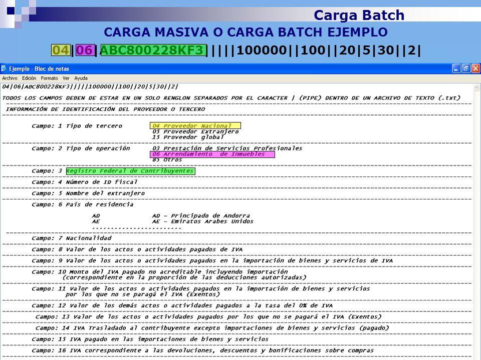 CARGA MASIVA O CARGA BATCH EJEMPLO 04 06 ABC800228KF3     100000  100  20 5 30  2  Carga Batch