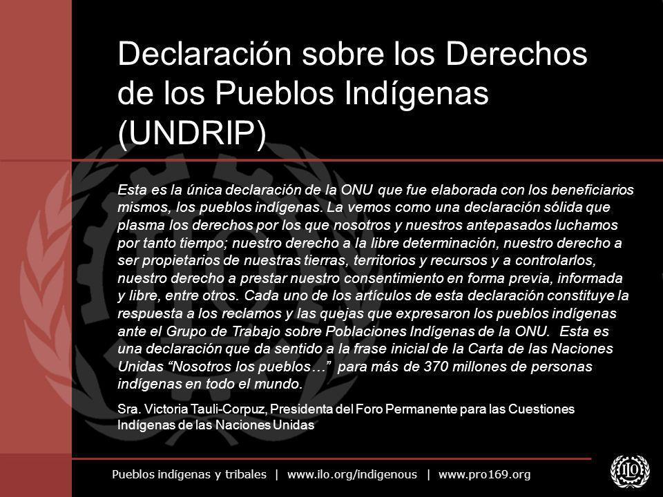 Pueblos indígenas y tribales | www.ilo.org/indigenous | www.pro169.org Esta es la única declaración de la ONU que fue elaborada con los beneficiarios