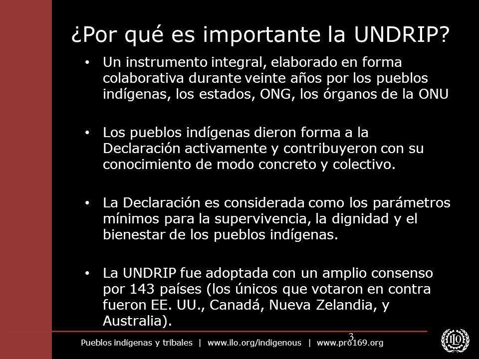Pueblos indígenas y tribales | www.ilo.org/indigenous | www.pro169.org 3 ¿Por qué es importante la UNDRIP? Un instrumento integral, elaborado en forma