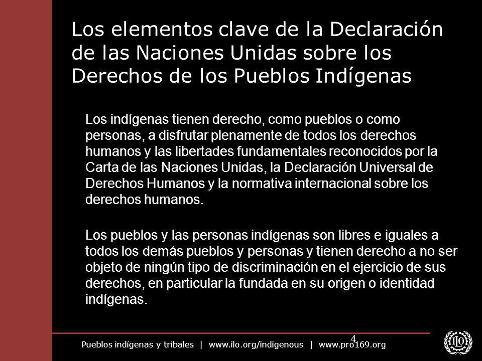 Pueblos indígenas y tribales | www.ilo.org/indigenous | www.pro169.org 4 Los elementos clave de la Declaración de las Naciones Unidas sobre los Derech