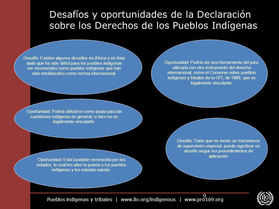 Pueblos indígenas y tribales | www.ilo.org/indigenous | www.pro169.org 9 Desafíos y oportunidades de la Declaración sobre los Derechos de los Pueblos