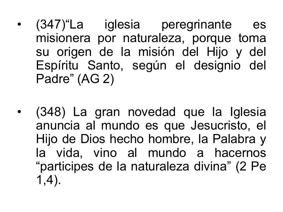 (347)La iglesia peregrinante es misionera por naturaleza, porque toma su origen de la misión del Hijo y del Espíritu Santo, según el designio del Padr