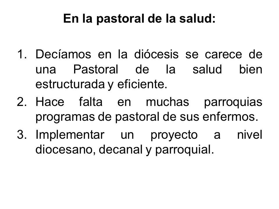 En la pastoral de la salud: 1.Decíamos en la diócesis se carece de una Pastoral de la salud bien estructurada y eficiente. 2.Hace falta en muchas parr