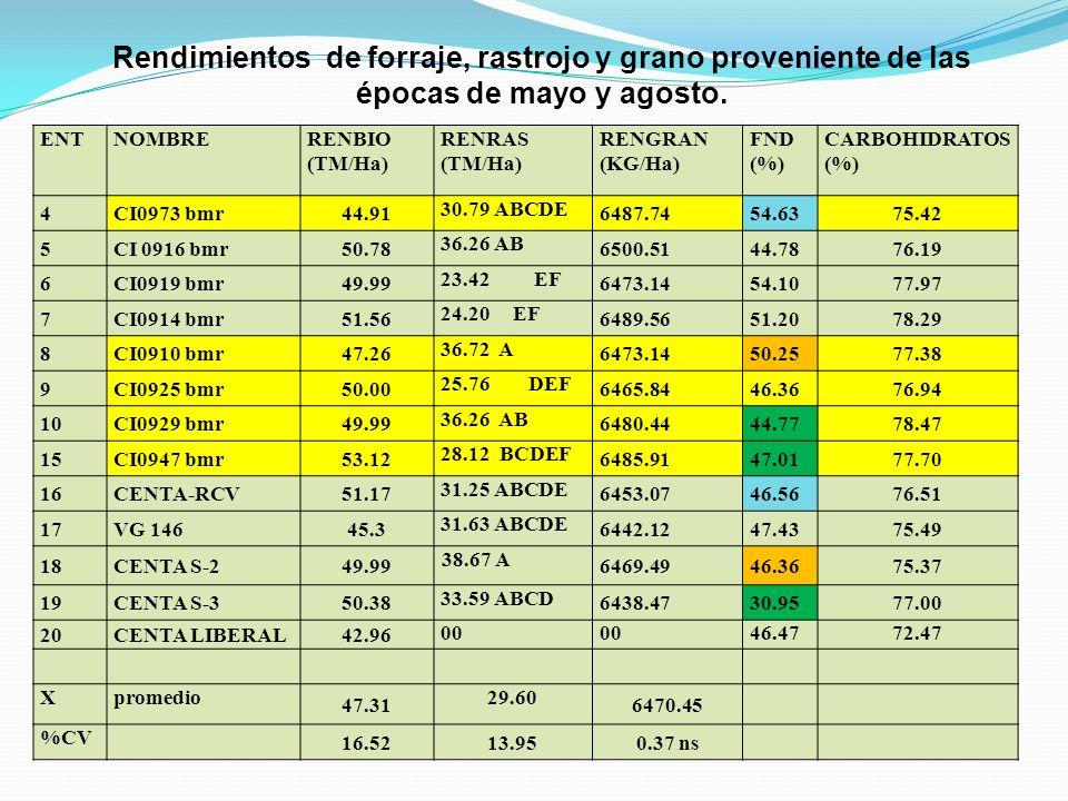 Rendimientos de forraje, rastrojo y grano proveniente de las épocas de mayo y agosto. ENTNOMBRERENBIO (TM/Ha) RENRAS (TM/Ha) RENGRAN (KG/Ha) FND (%) C