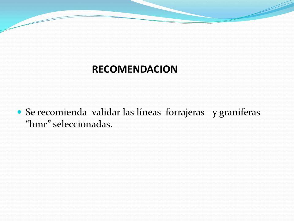 RECOMENDACION Se recomienda validar las líneas forrajeras y graniferas bmr seleccionadas.