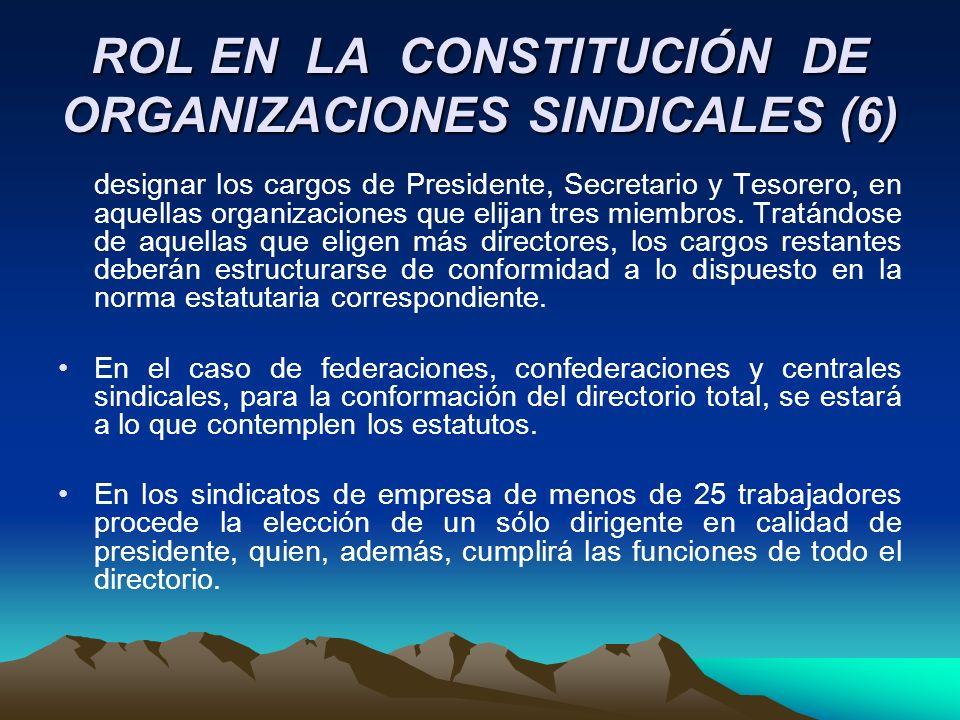 ROL EN LA CONSTITUCIÓN DE ORGANIZACIONES SINDICALES (6) designar los cargos de Presidente, Secretario y Tesorero, en aquellas organizaciones que elija