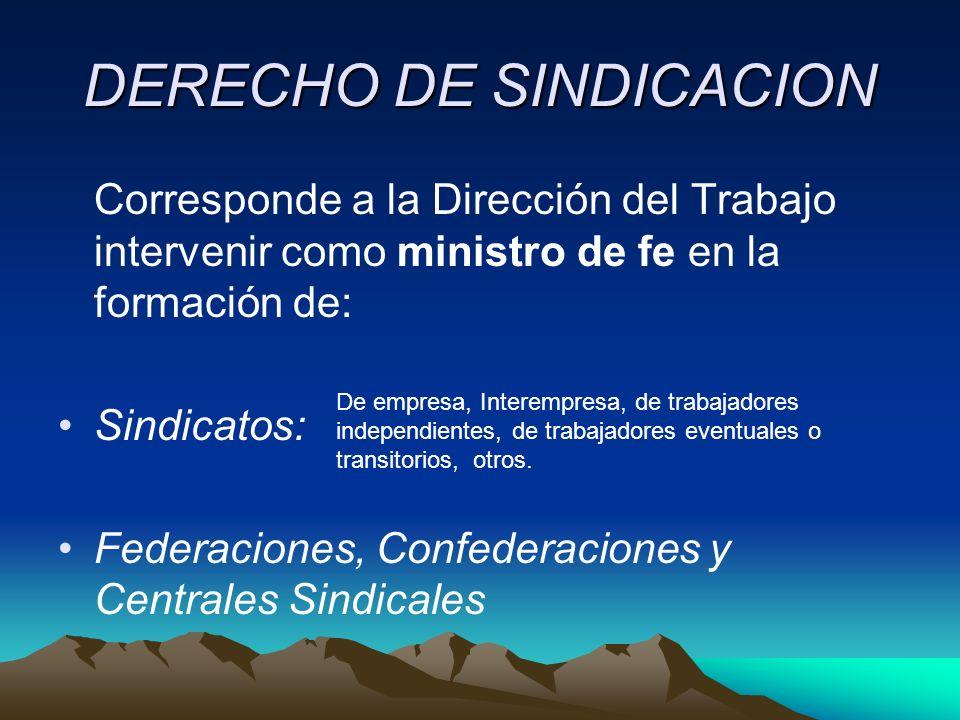 DERECHO DE SINDICACION Corresponde a la Dirección del Trabajo intervenir como ministro de fe en la formación de: Sindicatos: Federaciones, Confederaci