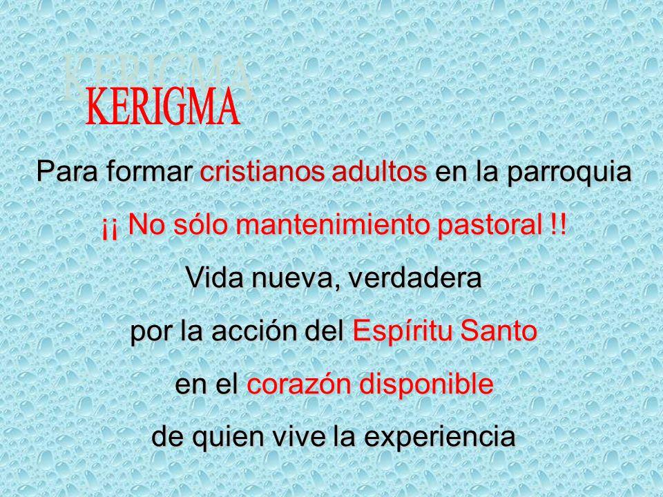 Para formar cristianos adultos en la parroquia ¡¡ No sólo mantenimiento pastoral !.