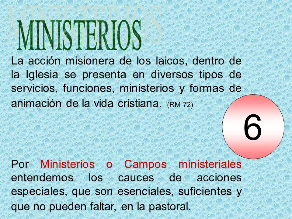 La acción misionera de los laicos, dentro de la Iglesia se presenta en diversos tipos de servicios, funciones, ministerios y formas de animación de la vida cristiana.