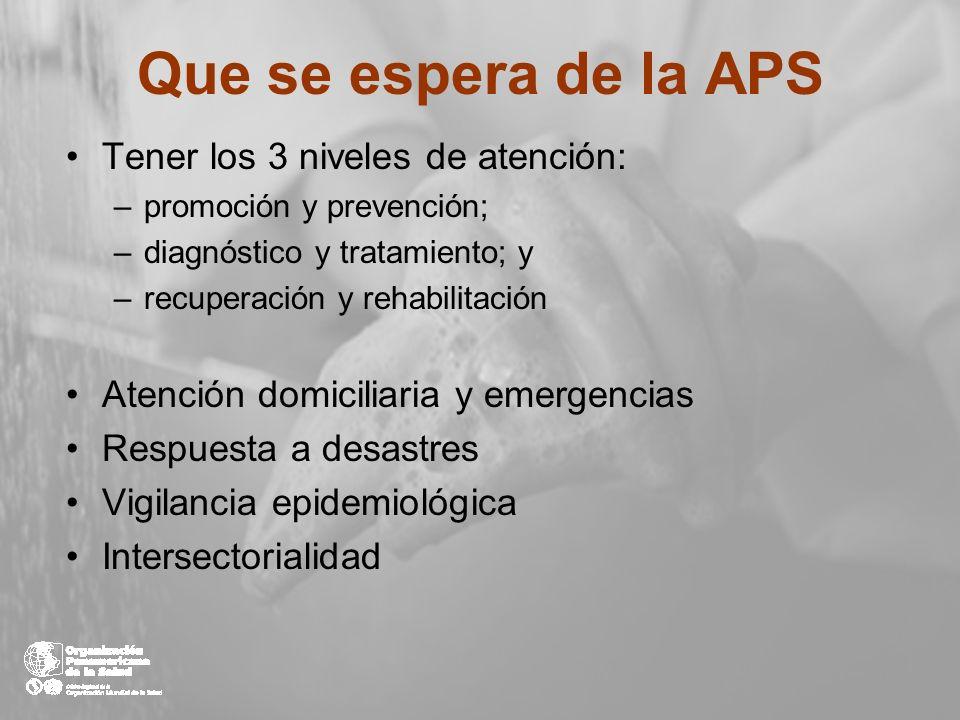 Que se espera de la APS Tener los 3 niveles de atención: –promoción y prevención; –diagnóstico y tratamiento; y –recuperación y rehabilitación Atenció