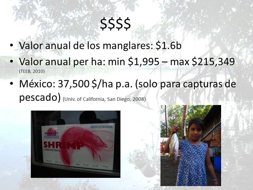 $$$$ Valor anual de los manglares: $1.6b Valor anual per ha: min $1,995 – max $215,349 (TEEB, 2010) México: 37,500 $/ha p.a. (solo para capturas de pe